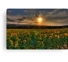 The Big Country Canvas Print