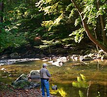 THE BEAUTY OF TROUT FISHING by susan Lipschutz