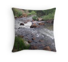 Ever Changing As It Flows Throw Pillow