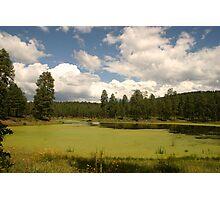 Bootleg Lake in September Photographic Print
