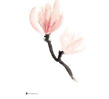 Magnolia art print watercolor painting by Joanna Szmerdt