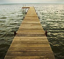 Walk the Plank by oastudios