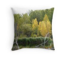 Fall Beaver Pond   Throw Pillow