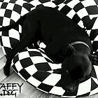 Staffy Dog black on black and white by amanda metalcat dodds