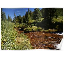 Guanella Pass River Poster