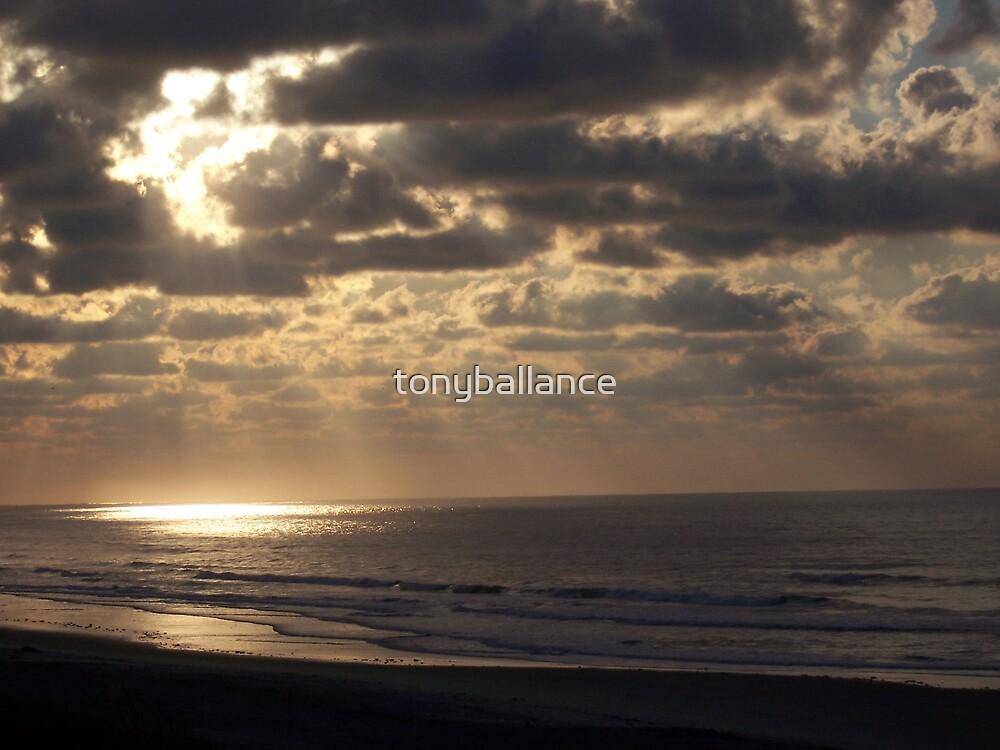 Shining Light by tonyballance