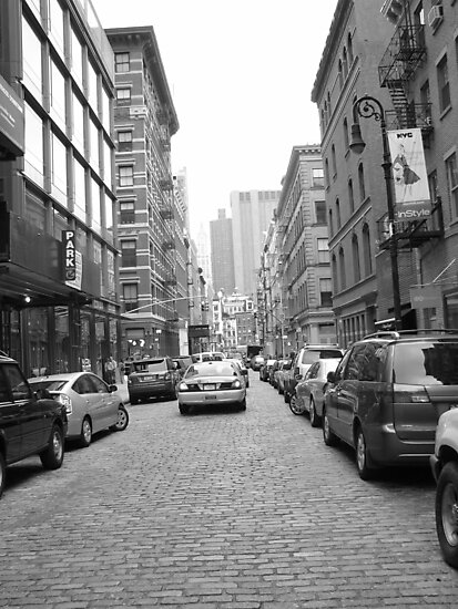 Greenwich Village Cobble Stone Streets Untouched. by sarahpoodle