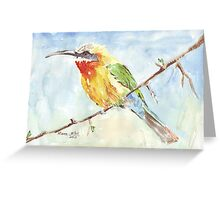 Whitefronted Bee-eater (Merops bullockoides) Greeting Card