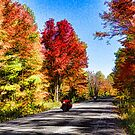 Colorful Bike Ride - Impressions Of Fall by Georgia Mizuleva