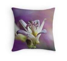 Little Gem Throw Pillow