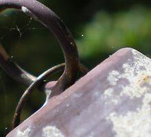 Webs & Rust by Rebekah  McLeod