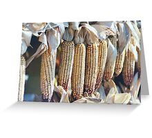 Ears in a Row Greeting Card