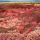 Painted Desert Landscape by Laurie Puglia