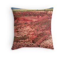 Painted Desert Landscape Throw Pillow