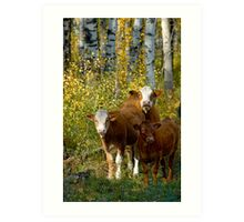 Larry,Curly and Mooo Art Print