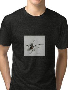 Black Widow Spider Tri-blend T-Shirt