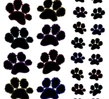 Paw Prints with Colourful Outline by amanda metalcat dodds