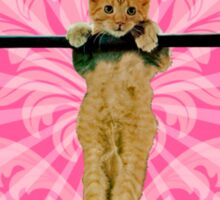 Hang In There Baby Kitten Sticker