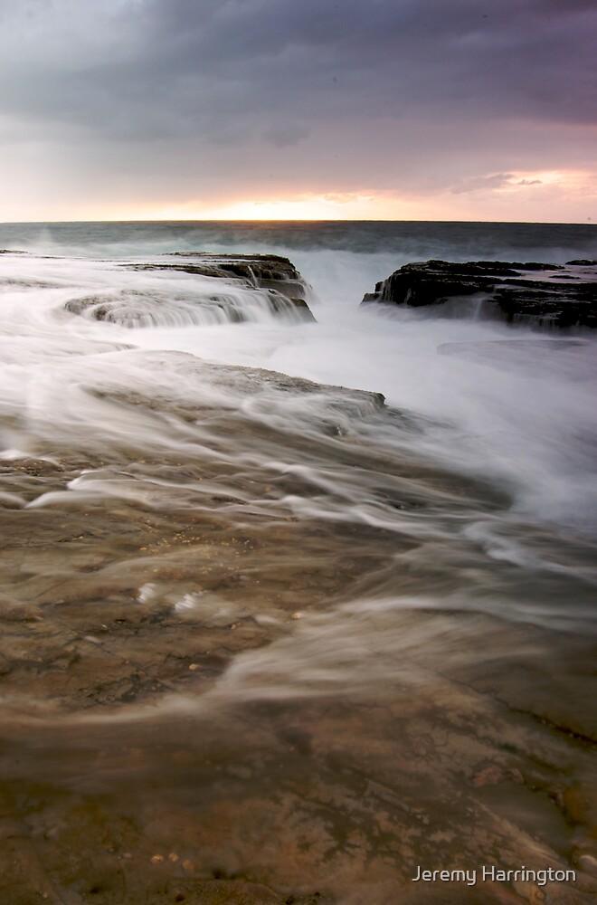 Whitewash by Jeremy Harrington