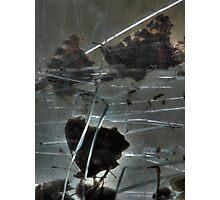 Glass Grave Photographic Print