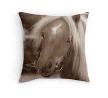 Shetland pony Throw Pillow