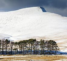 Pen Y Fan in the Snow by Heidi Stewart