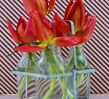 Tulips in mini milk bottles by Judi Lion