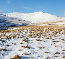 Snowy Tracks to Pen Y Fan by Heidi Stewart
