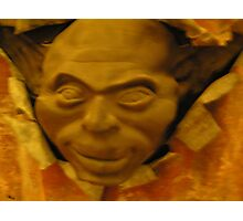 Cold cast Bronze Sculpture Photographic Print
