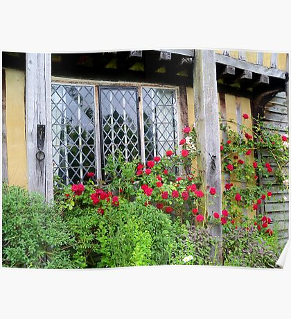 Red Roses Around an Old Leaded Window  Poster