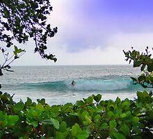 Surfer Dude In Bocas Del Toro - Panama by Al Bourassa