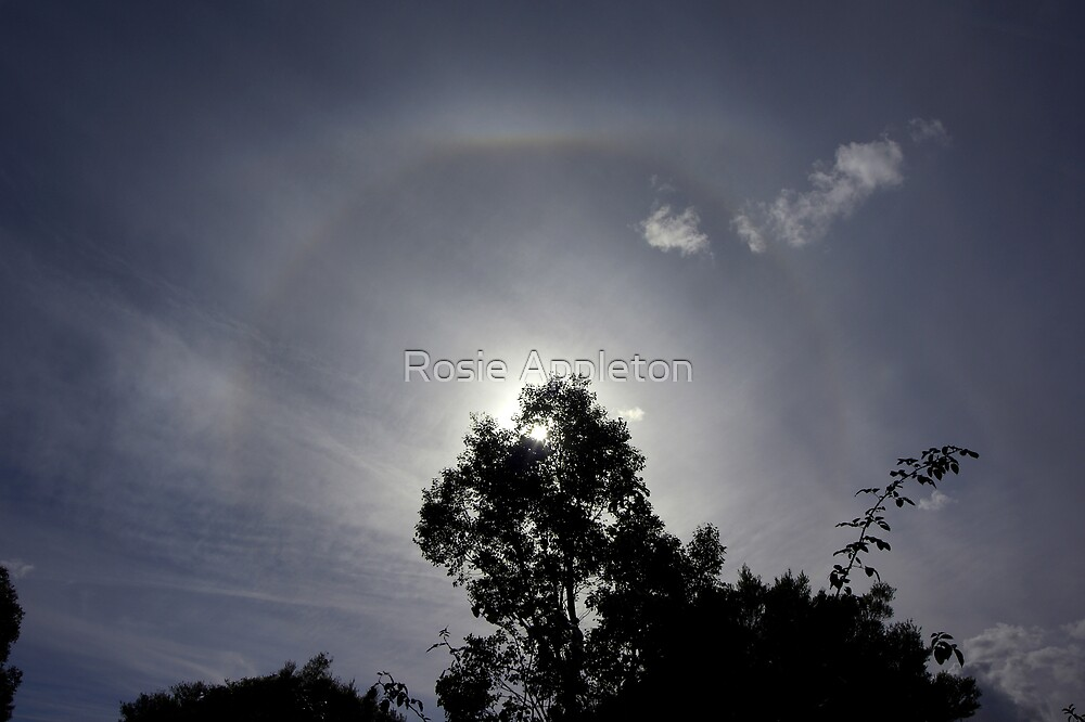 Sun halo on my doorstep! by Rosie Appleton