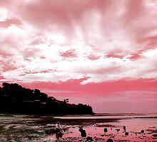 Meditating on the beach  by Roz McQuillan