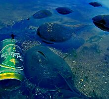 Beach Pollution by Ray Smith