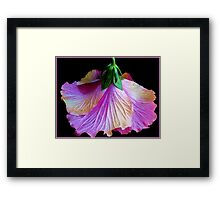 From Youth to Maturity Framed Print