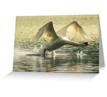 Silver shimmer Greeting Card
