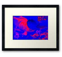 You Smart Little Fishie Framed Print