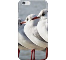 Then there were four iPhone Case/Skin