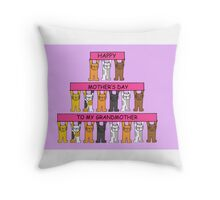 Happy Mother's Day to my Grandmother. Throw Pillow