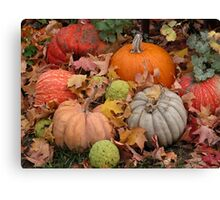 Pumpkins, squash and osage oranges Canvas Print