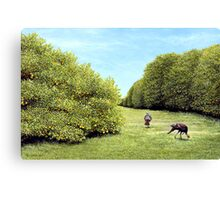 Turkeys in the Grove Canvas Print