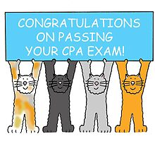 Congratulations on passing the CPA exam. by KateTaylor