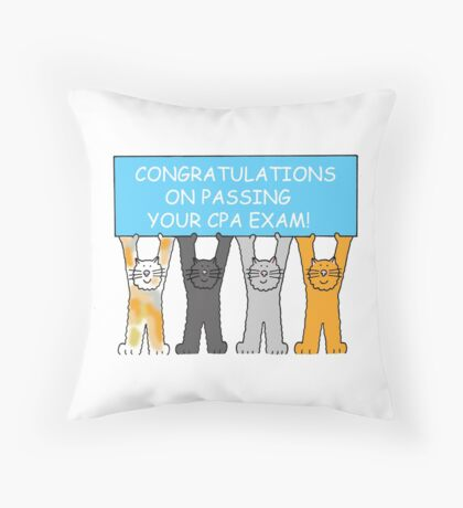 Congratulations on passing the CPA exam. Throw Pillow