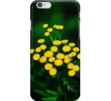 Green Jacket With Golden Buttons iPhone Case/Skin