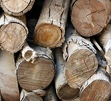 logs by keki