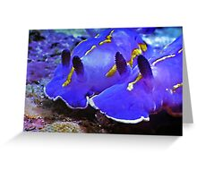 Fascinating Marine Life: Water Snails Greeting Card
