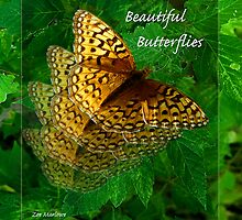 Beautiful Butterflies by digitalmidge