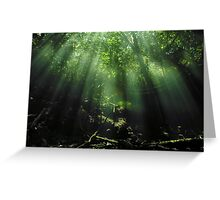 Cave Diving in Mexico Greeting Card