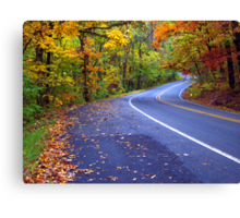 Autumn Drive On The Pig Trail Canvas Print