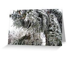 frozen needles Greeting Card